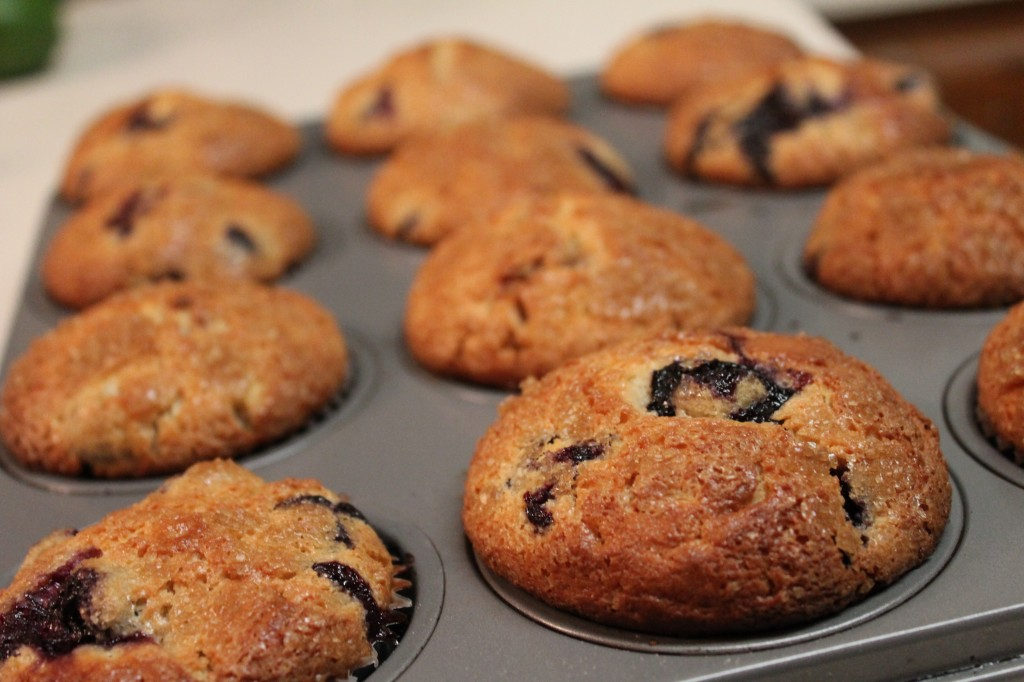 Golden brown blueberry cheesecake muffins topped with sugar