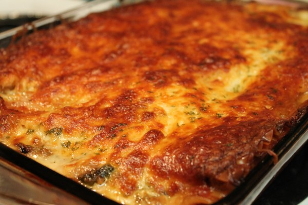 This chicken lasagna is made with a rich gouda sauce and tons of delicious veggies!