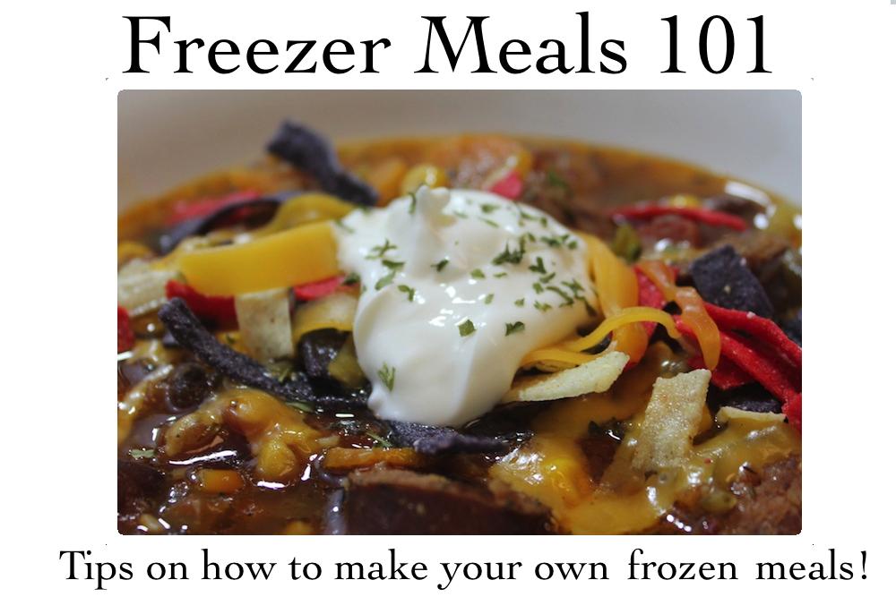 freezer101