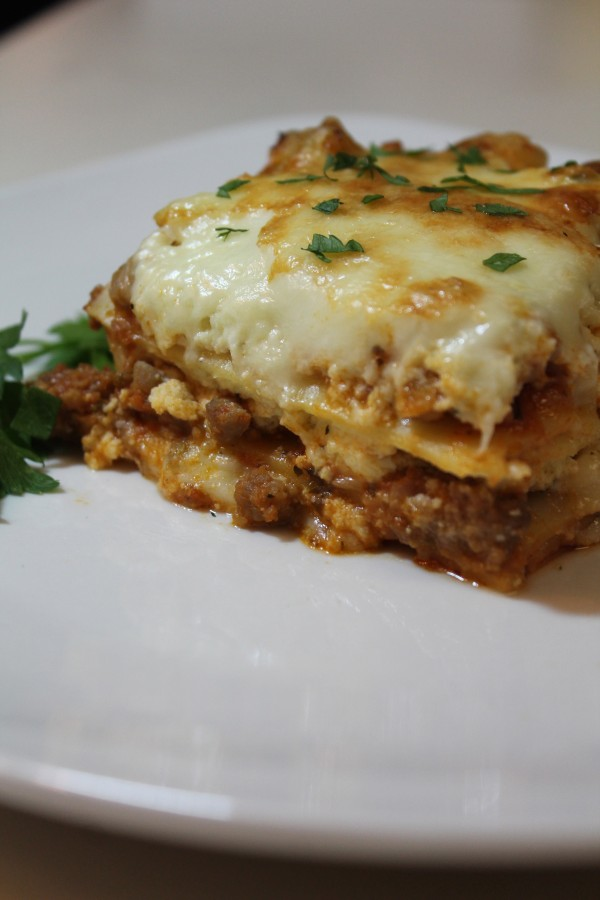 Check out this cheesy lasagna! Yum!