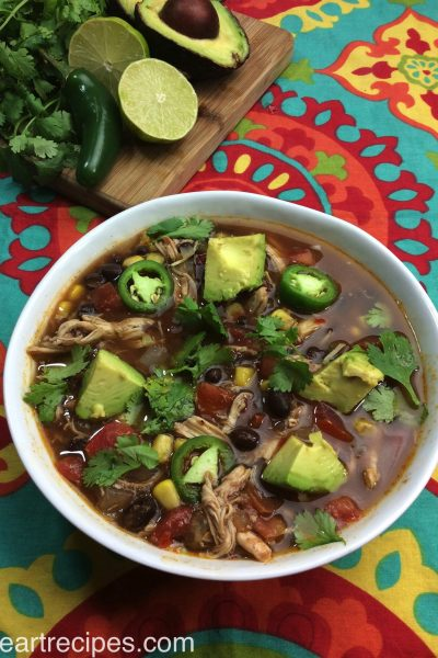 Slow Cooker Tex Mex Chicken Soup