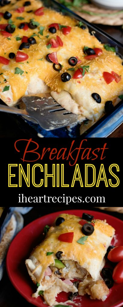 Cheesy Breakfast Enchiladas - the perfect breakfast recipe any time
